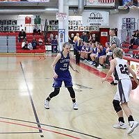 Women's Basketball: University of Wisconsin, La Crosse Eagles vs. Luther College Norse