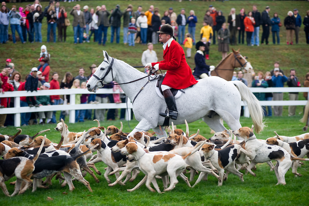 Fox hunting, Blessing of the Hounds, Elkridge Harford Hunt club