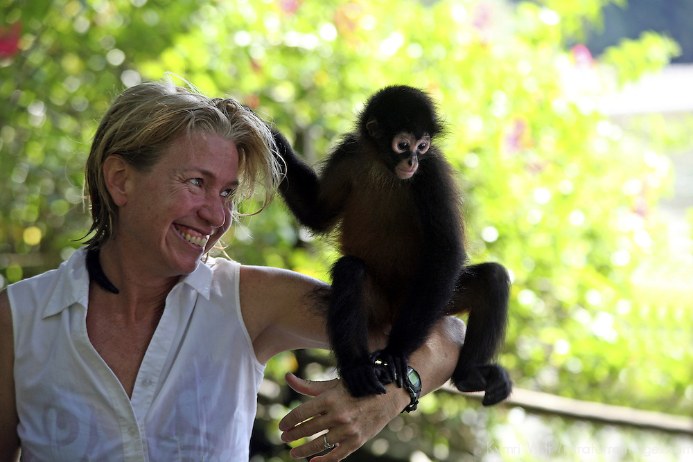 Central America, Latin America, Costa Rica, Golfo Dulce, Cana Blanca Wildlife Sanctuary. Primate encounters - a Spider Monkey perched on woman's arm.
