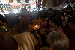 © Licensed to London News Pictures. 23/01/2016 Ipoh, Malaysia. A priest hands out holy ashes for forehead mark to the devotees after the arrival of the deity Lord Murugan in the Kallumalai Murugan Temple in Ipoh, Malaysia, during the Thaipusam Festival, Saturday, Jan. 23, 2016. Photo credit : Sang Tan/LNP