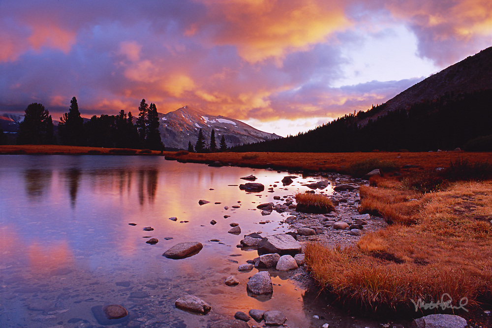 On a fall photography trip up to the Sierras, we decided to drive up to Tioga Pass to Yosemite to see what the conditions were like. As soon as we entered the park the light began to ignite. Grabbing all our gear we rushed out to the alpine tarns to capture the changing hues watching the sky light on fire!
