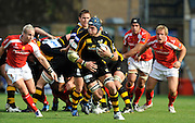 Wycombe, GREAT BRITAIN,  Wasps James HASKELL, looking for an opening during the Guinness Premiership match,  London Wasps vs Worcester Warriors at Adam's Park Stadium, Bucks on Sun 14.09.2008. [Photo, Peter Spurrier/Intersport-images]