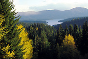 THIS PHOTO IS AVAILABLE FOR WEB DOWNLOAD ONLY. PLEASE CONTACT US FOR A LARGER PHOTO. North Idaho. Mountain scene with some autumn colors. Hayden Lake.