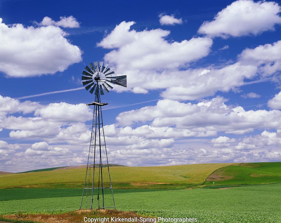 AA07312-03...WASHINGTON - A windmill among the farm fields in the Palouse region of Eastern Washington.