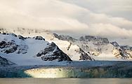 Ross Glacier, Royal Bay, South Georgia