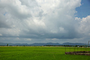 A large green rice paddy field from Teknaf Highway, near Cox Bazar, Chittagong Division, Bangladesh, Asia.  On the horizon is the hill range within Myanmar that many Rohingya people had to cross during the Rakhine crisis in 2017. The sky is dark and overcast with clouds.  (photo by Andrew Aitchison / In pictures via Getty Images)