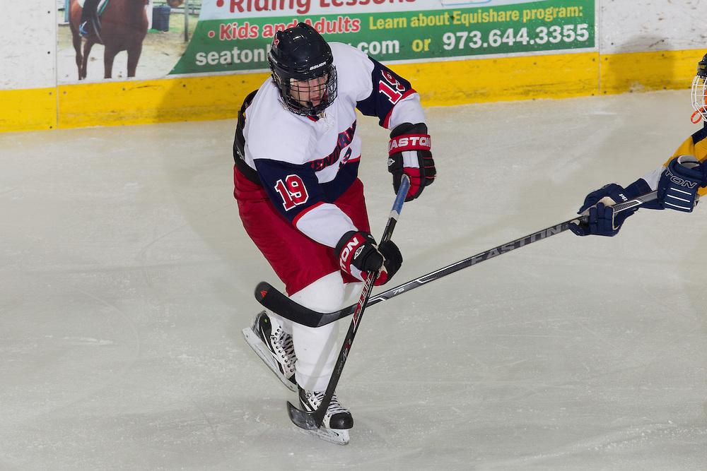 02-22-14 Ice Hockey: Halverson Cup - Mendham - Pequannock