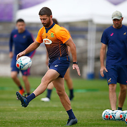 TOKYO, JAPAN - OCTOBER 15: Willie le Roux during the South African national rugby team training session at Fuchu Asahi Football Park on October 15, 2019 in Tokyo, Japan. (Photo by Steve Haag/Gallo Images)