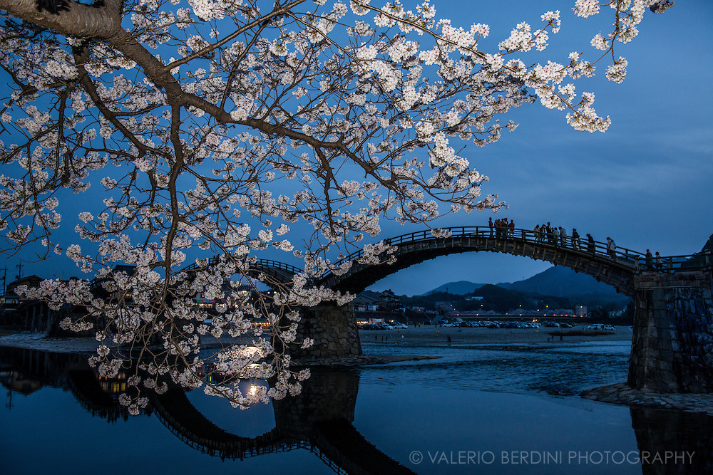 The calm waters of Nishiki River at the blue hour, just after sunset. People on Kintai bridge get ready for yokazura the night version of sakura.