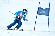Schladming, Austria - 2017 March 21: Hanul Jeon from South Korea (202) competes in Alpine Skiing Competition while Special Olympics World Winter Games Austria 2017 on the &quot;Sepp-Walcher-Downhill&quot; (Slope 32) near the &quot;Tauernalm&quot; in Rohrmoos on March 21, 2017 in Schladming, Austria.<br /> <br /> Mandatory credit:<br /> Photo by &copy; Adam Nurkiewicz / Mediasport<br /> <br /> Adam Nurkiewicz declares that he has no rights to the image of people at the photographs of his authorship.<br /> <br /> Picture also available in RAW (NEF) or TIFF format on special request.<br /> <br /> Any editorial, commercial or promotional use requires written permission from the author of image.<br /> <br /> Image can be used in the press when the method of use and the signature does not hurt people on the picture.
