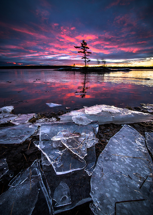 Sheets of ice wash up on the shore of Merrymeeting Bay in Topsham, while a vibrant sunrise lights up the sky behind a lone pine tree on an island just offshore.