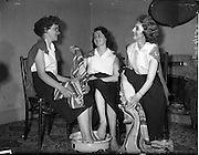 27/05/1959<br /> 05/27/1959<br /> 27 May 1959<br /> Gael-Linn Concert and Singing Competition in the Town Hall, Nenagh, Co. Tipperary, in which R.E. singers and harpists took part. Image shows Ann Mulcahy, Maura Brown and Nuala O'Meara of Craobh Mhuire Dancing Troupe, Neagh, as they bathe their feet after the Gael-Linn concert.
