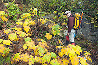 Man hiking through fall foliage&#xA;<br />