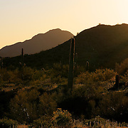 Beam of sunlight over hills near the San Tan Mountains