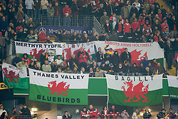 FRANKFURT, GERMANY - Wednesday, November 21, 2007: Wales supporters during the final UEFA Euro 2008 Qualifying Group D match against Germany at the Commerzbank Arena. (Pic by David Rawcliffe/Propaganda)
