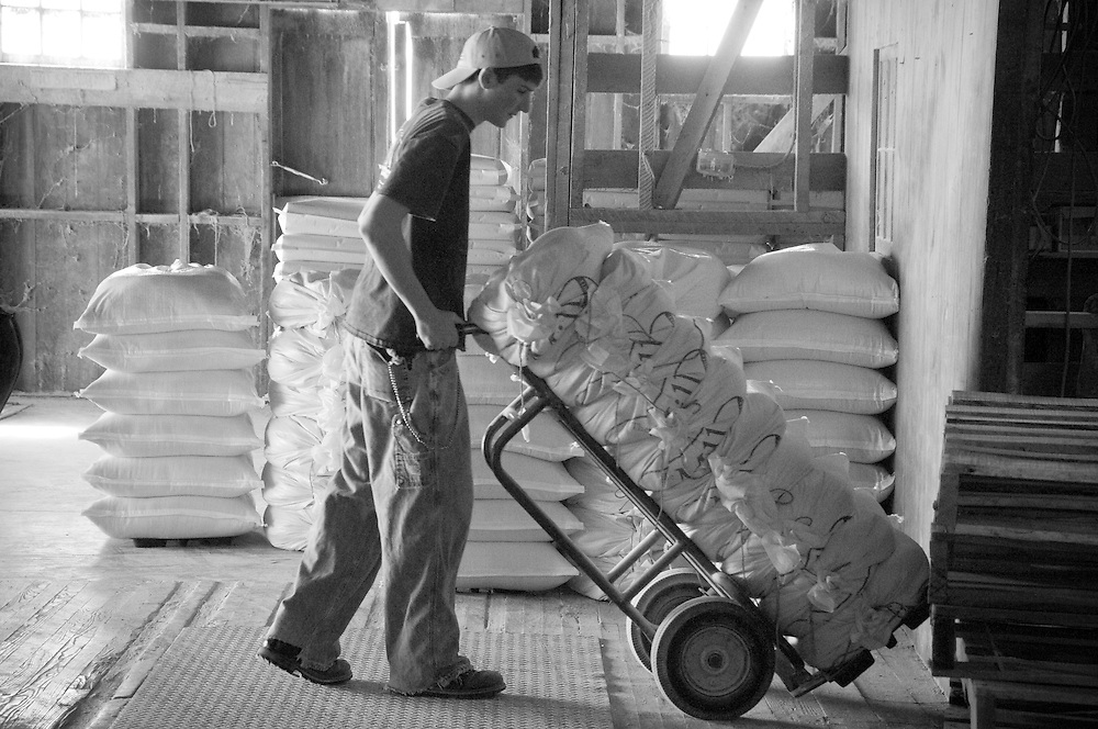 Boy pushing a cart of packages at a feed mill
