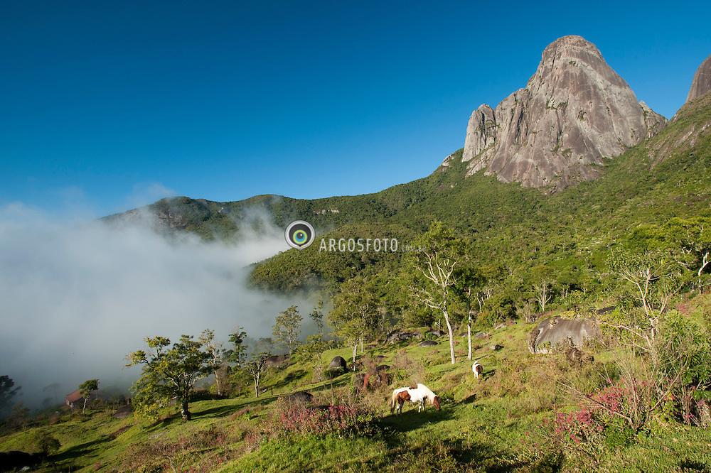 Parque Estadual dos Tres Picos. Regiao entre Nova Friburgo e Teresopolis - RJ.  / Tres Picos Nacional Park . Between Nova Friburgo and Teresopolis - RJ.