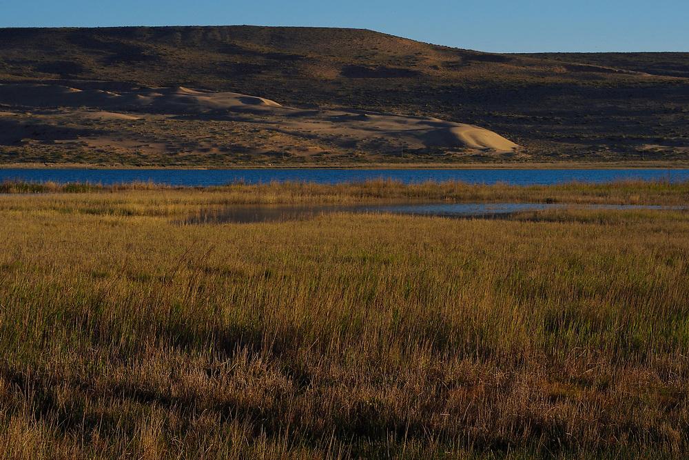 Semi-desert lake wetlands, Inner Mongolia, China