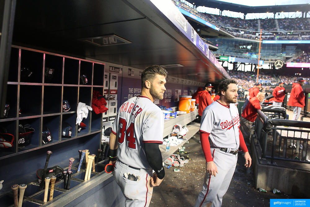 NEW YORK, NEW YORK - May 19: Bryce Harper #34 (left), of the Washington Nationals and team mate Daniel Murphy #20 watching play from the dugout during the Washington Nationals Vs New York Mets regular season MLB game at Citi Field on May 19 2016 in New York City. (Photo by Tim Clayton/Corbis via Getty Images)