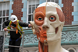 "© Licensed to London News Pictures. 24/06/2017. London, UK. A workman unveils a 21 feet tall, 2.5 tonne bronze sculpture called ""Temple"" by Damien Hirst near the Lloyds Building in the City of London.  The artwork will be on display as part of ""Sculpture in the City"", a festival of sculpture in the City of London showing works by leading artists. Photo credit : Stephen Chung/LNP"