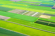 Nederland, Noord-Holland,  Gemeente Medemblik, 05-08-2014; Polder De Hooge Weere, tussen Sijbekarspel en Benningbroek. West-Friesland, bekend gebied voor de teelt van groente.<br /> West-Friesland, well known area for growing vegetables.<br /> luchtfoto (toeslag op standard tarieven);<br /> aerial photo (additional fee required);<br /> copyright foto/photo Siebe Swart