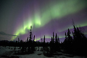 Aurora, April 20, 2017 near Denali, Alaska