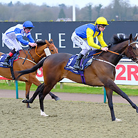 Lingfield 3rd March