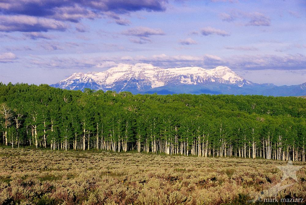 Wolf Creek Ranch, Utah