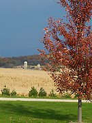Fall scene from Fitchburg, Wisconsin, USA; 25 Oct 2011