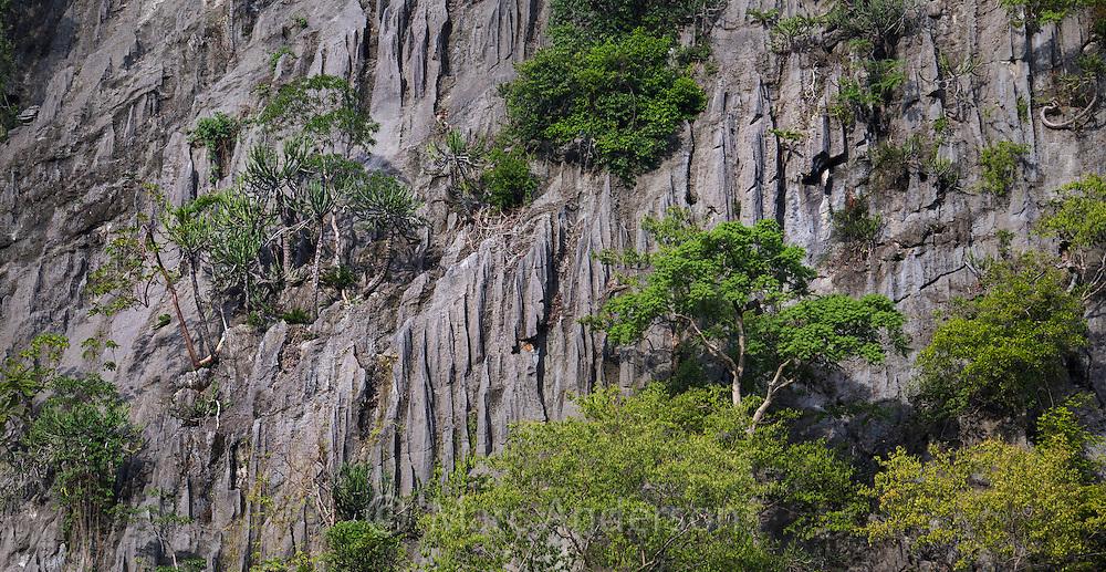 Limestone cliff near Hup Phatad, Thailand