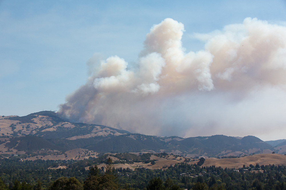The Morgan Fire burning on Mount Diablo as seen from Highland Drive in Danville,CA on September 9th 2013.