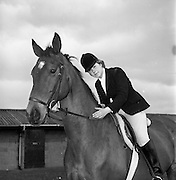 "04/05/1965<br /> 05/04/1965<br /> 04 May 1965<br /> Pictures from the RDS Spring show for the Belfast Telegraph. Miss Deborah Eakin on her horse ""Destiny""."