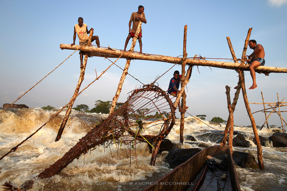 Fishermen check their baskets at Wagenia Falls in the middle of the Congo River, near Kisangani, DR Congo. Most of the wooden frames are built near the river's edge but some of the fishermen build frames in the very center of the river were the flow is greatest as they believe this is where the strongest, and biggest, fish live. The wooden frames are made by forcing tree trunks into crevices in the rocks during the dry season.
