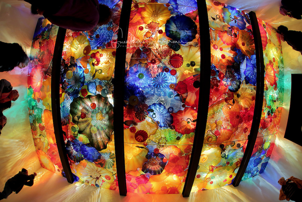 Chihuly, Exhibition Event, Montreal, Quebec, Canada