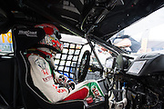 November 16-20, 2016: Macau Grand Prix. Tiago MONTEIRO, Honda Civic, 29 António FELIX DA COSTA, Carlin