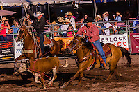 Team roping competition, Snowmass Rodeo, Snowmass Village (Aspen), Colorado USA.