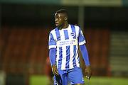 Daniel Akindayini, Brighton striker during the Barclays U21 Premier League match between Brighton U21 and U21 West Bromwich Albion at the Checkatrade.com Stadium, Crawley, England on 25 January 2016.