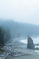 Rialto Beach in Olympic National Park, WA