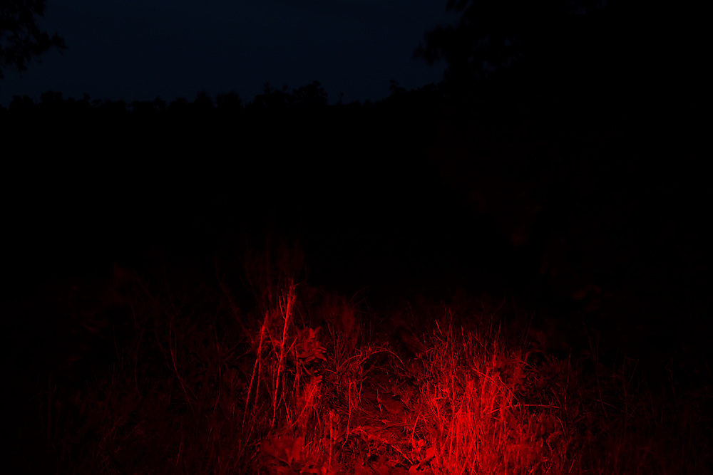 Experimental night photography by Alan Winslow