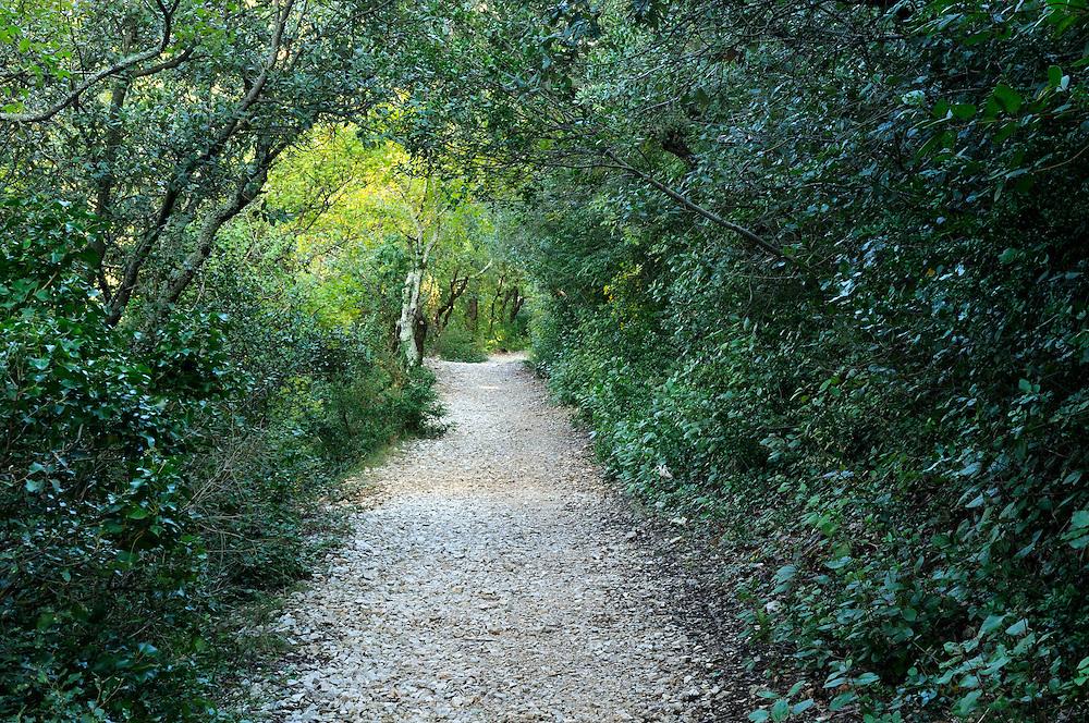 France, Languedoc Roussillon, Gard (30), Uzège, Lussan, les Concluses, chemin des Concluses