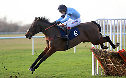 Precious Bounty ridden by jockey Richard Johnson