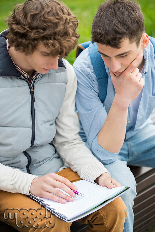 Young male college friends studying together in park