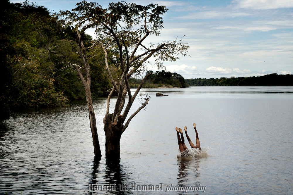 Kids jumping in the Orinoco reiver from a tree. they live in a small vilage of eight huts on the banks of the river in Aamazonas the southern state of Venezuela. they belong to a tribe of Curipaco Indians.