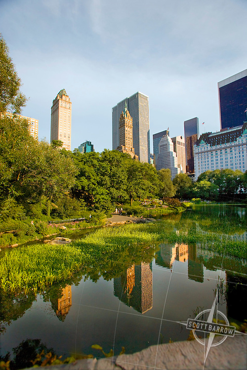 Central Park Pond and Fifth Avenue buildings