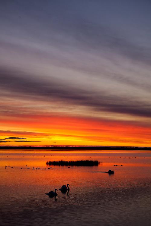 Haapsalu bay at dawn (View from the hotel Promenaadi)