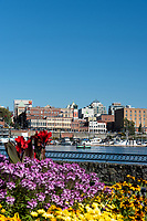 Downtown Victoria, BC, features a mix of historical and new buildings on the Inner Harbour.