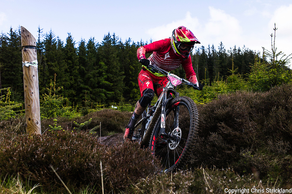 Glentress, Peebles, Scotland, UK. 31st May 2015. Anneke Beerten in action on Stage 8 of The Enduro World Series Round 3 taking place on the iconic 7Stanes trails during Tweedlove Festival.