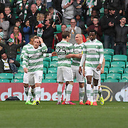 Celtic's Scott Brown is congratulated after scoring his side's second goal -  Celtic v Dundee - SPFL Premiership at Celtic Park<br /> <br /> <br />  - © David Young - www.davidyoungphoto.co.uk - email: davidyoungphoto@gmail.com