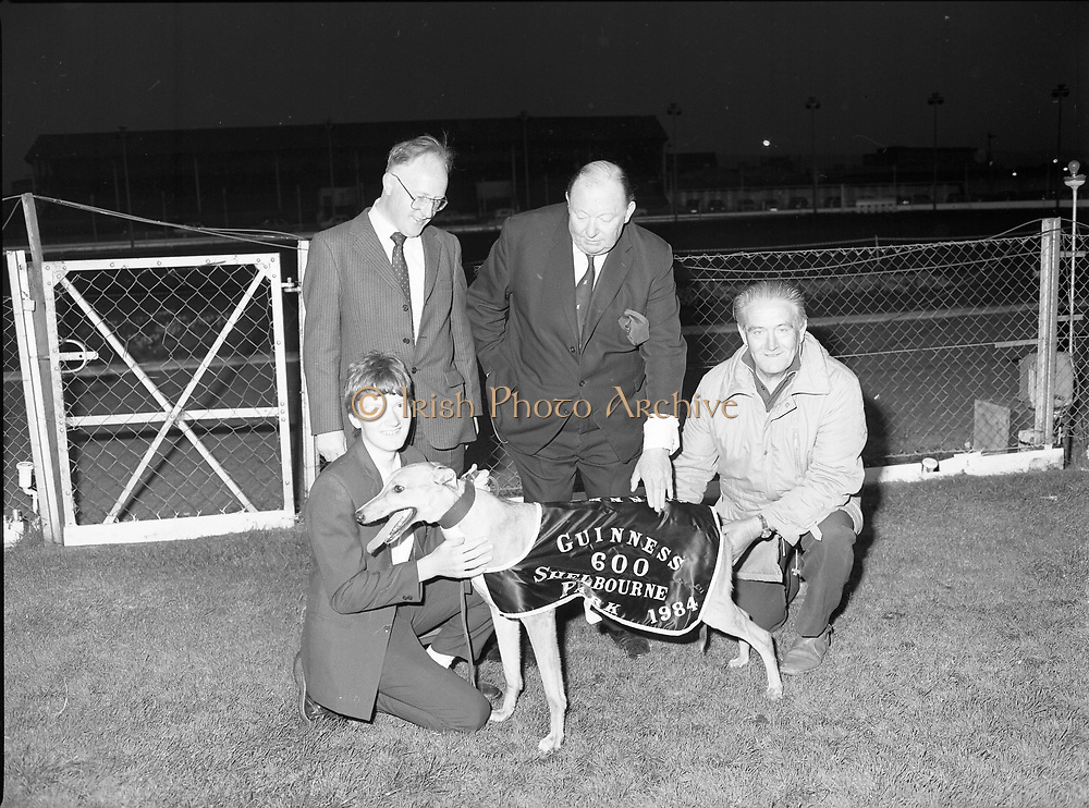 Guinness 600 race in Shelbourne Park, Dublin,<br /> 12th May 1984