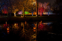 © Licensed to London News Pictures. 20/11/2015. LONDON, UK. The Enchanted Woodland opens for its 10th anniversary season at Syon House in West London.  An illuminated trail takes visitors through gardens designed by Capability Brown, round an ornamental lake and ending at the spectacular Great Conservatory.  Photo credit : Stephen Chung/LNP